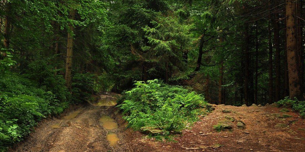 Gorce - plan pieszej wędrówki