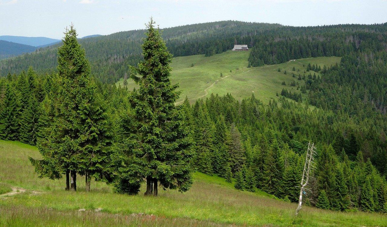 Gorce - położenie i historia pasma górskiego