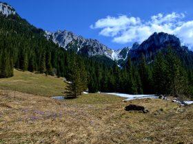 Dolina Kościeliska - jakimi szlakami podążać?
