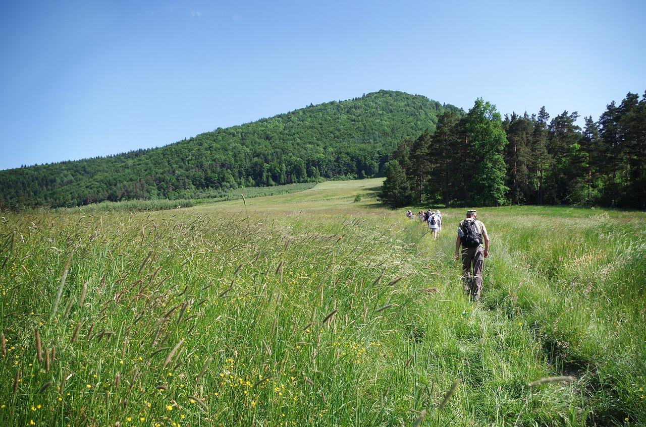 Wszechobecne polany - Beskid Wyspowy