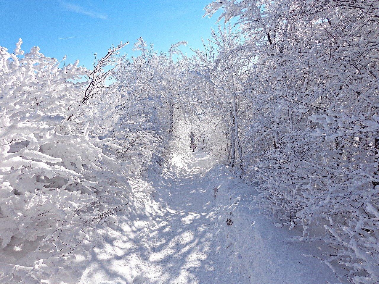 Pogoda w Bieszczadach