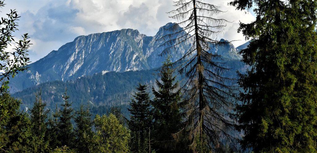 szczyt-giewont-w-polskich-tatrach.jpg