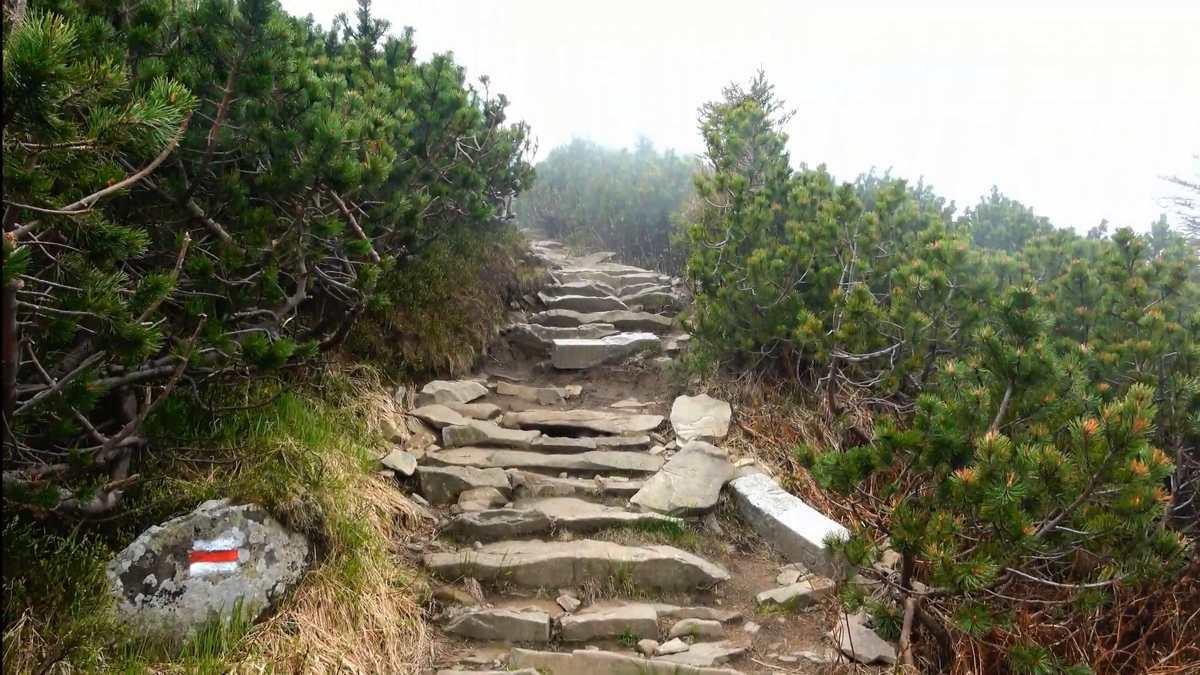Wysokość n.p.m i warunki pogodowe na szlaku babia góra