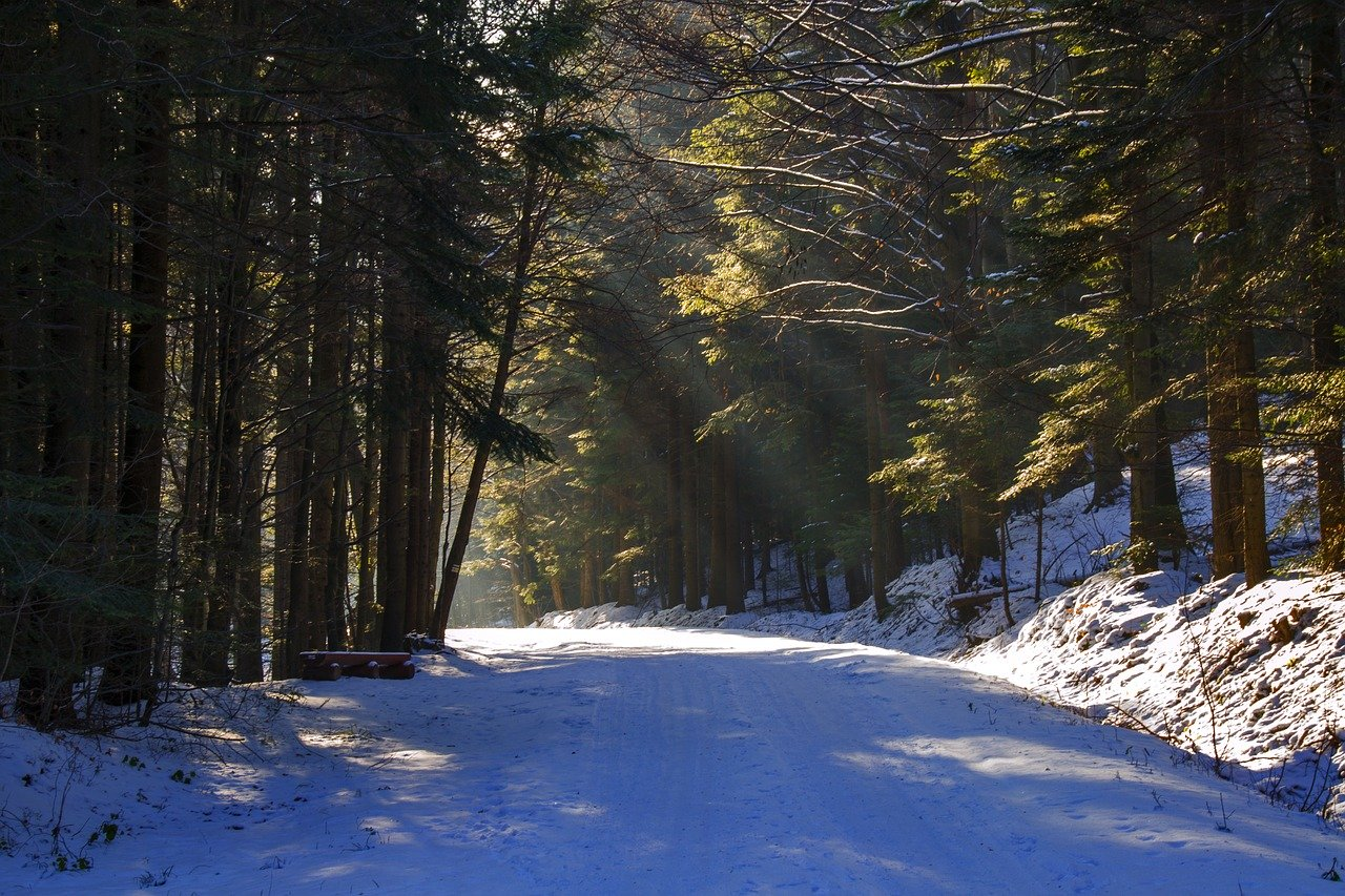 Sniezna droga w gorach