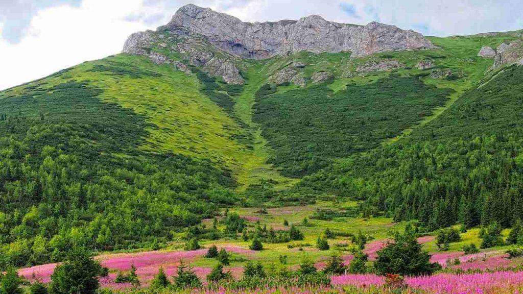 tatry słowackie szlaki