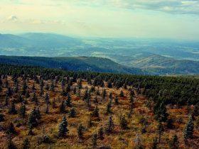 Góry Złote, czyli Rychlebské hory