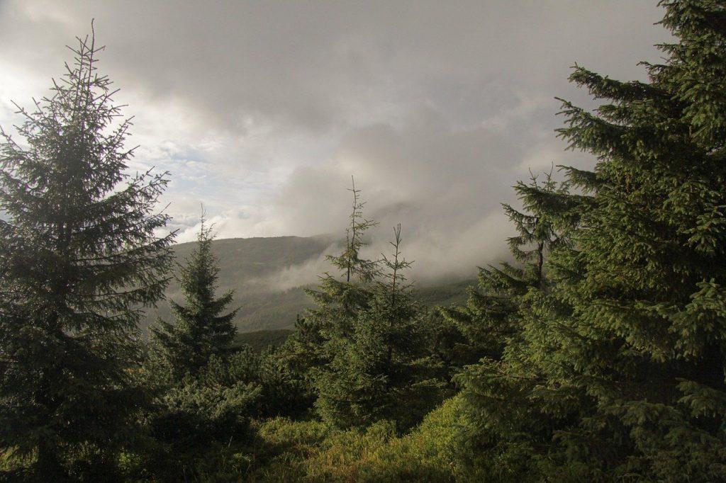 panorama-bieszczady-wschodnie.jpg