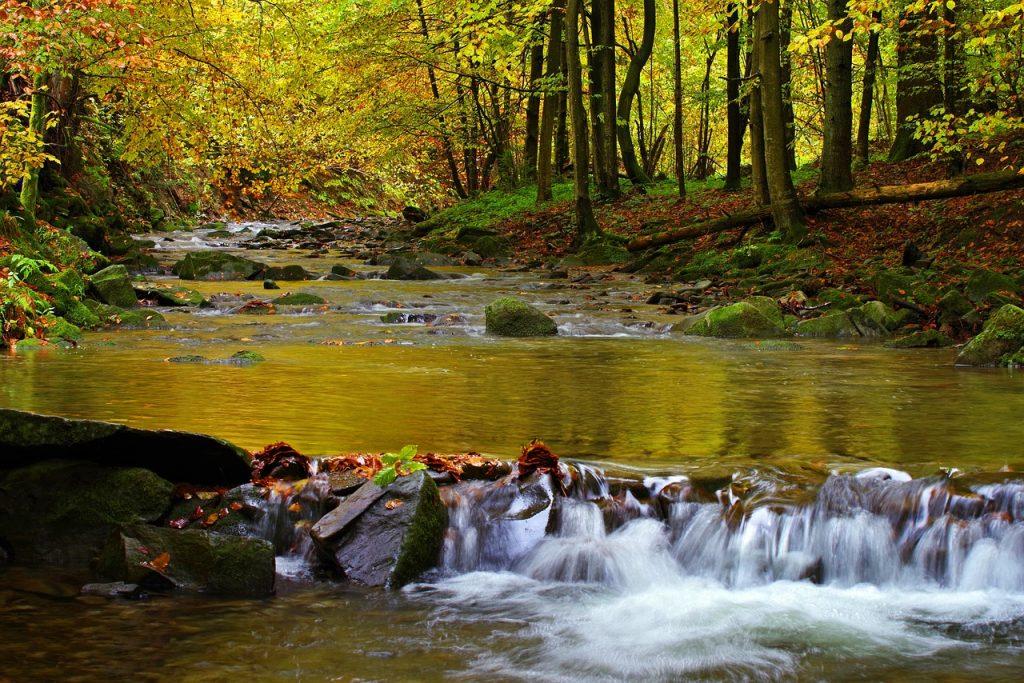 bieszczady-rzeka.jpg