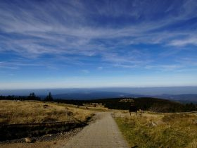 harz-panorama.jpg
