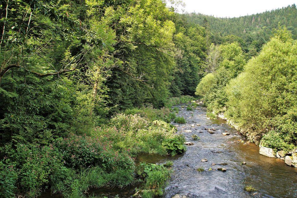 rzeka-bystrzyca-gory-orlickie.jpg