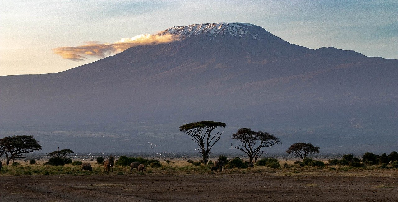 Afryka Kilimandzaro