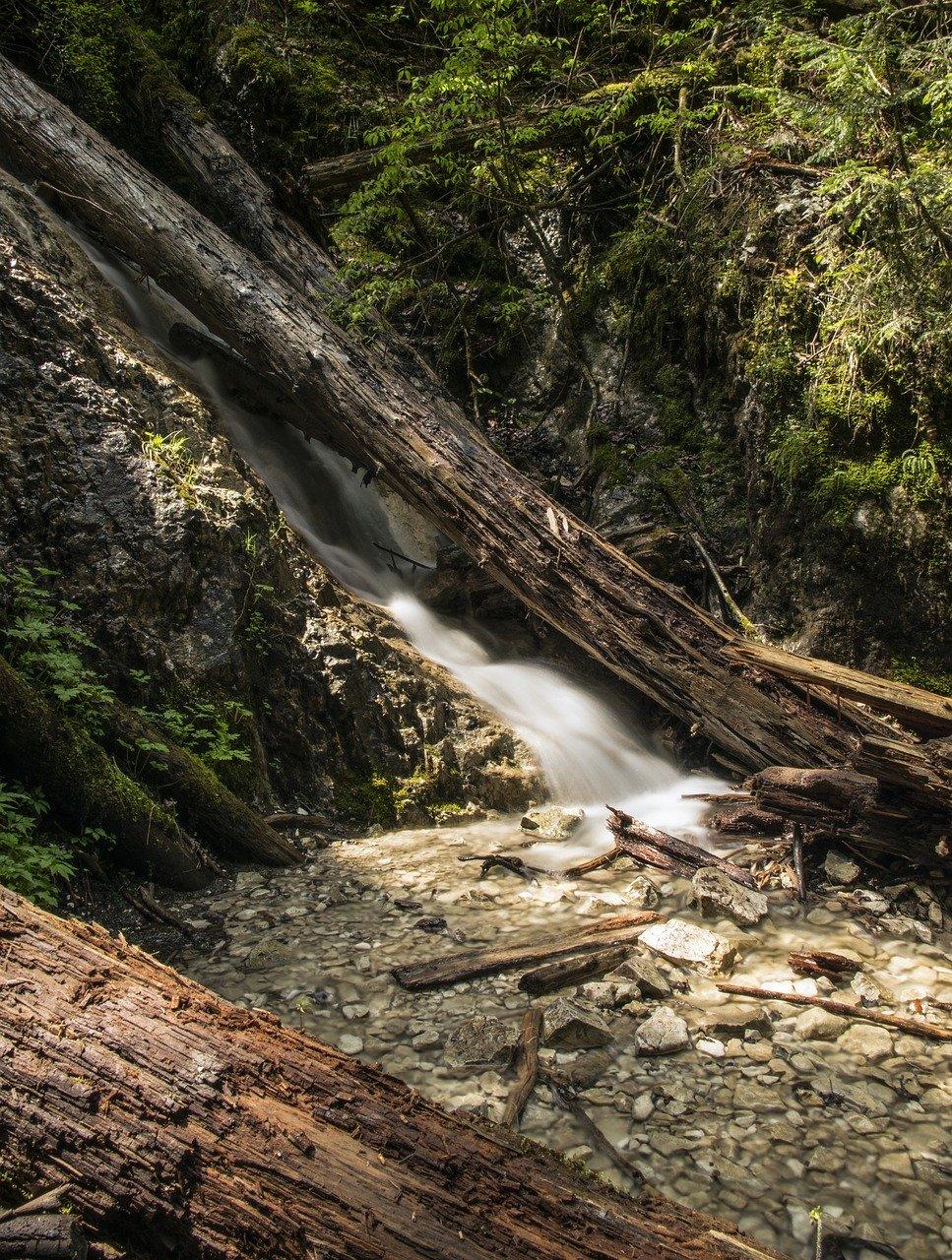lesny wodospad