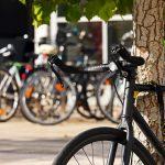 W jaki zabezpieczyć rower przed kradzieżą?